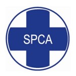 Alberton SPCA Outreach Program