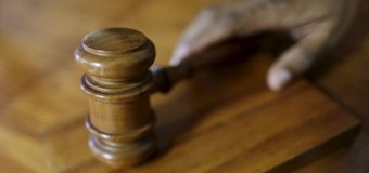 NSPCA To Argue In The Constitutional Court